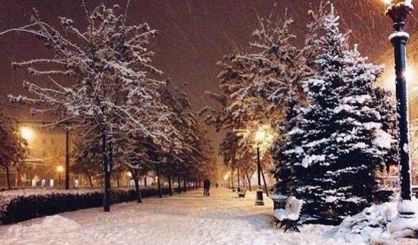 пустая скамейка, занесенная снегом