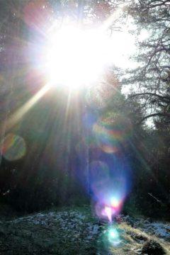 блики яркого солнечного света