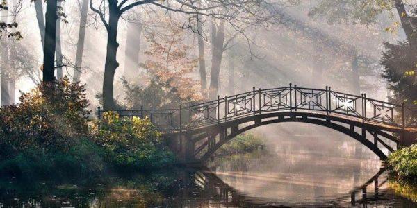 ажурный мост через ручей