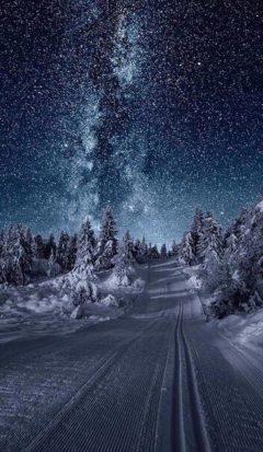 ночная зимняя дорога к Млечному пути