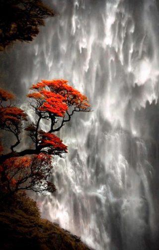 водопад эмоций