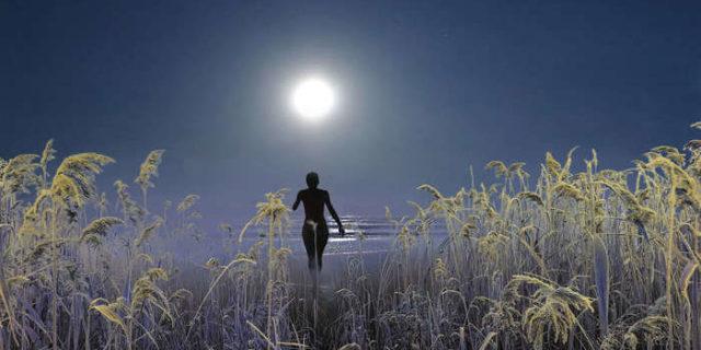 ночной путь к звезде