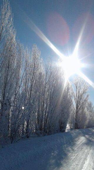 Белый снег искрится на Солнце под синим небом